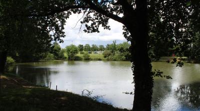 étangs 2.JPG
