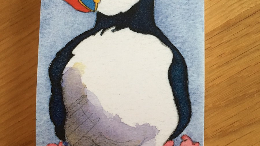 Puffins Paperback Pocket Notebook