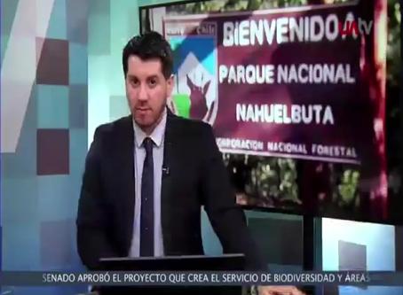 Entrevista Patricio Lazo Dirigente Sindicato Araucanía