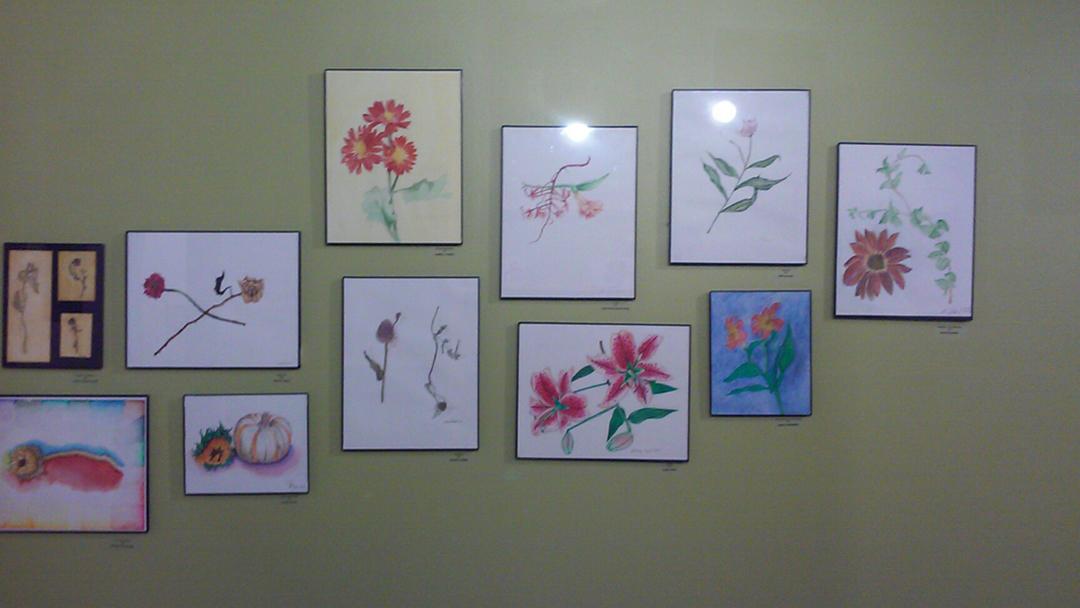 Junius8-SAY SI Gallery