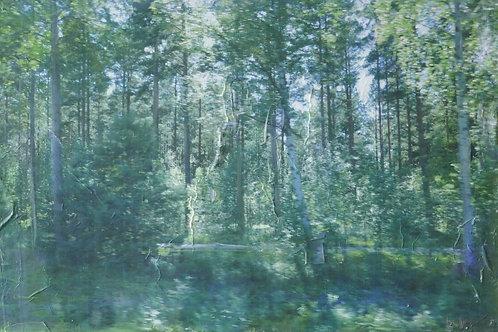Finnland X