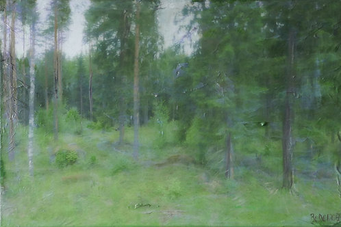 Finnland XIII