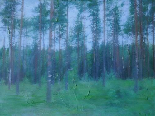 Finnland II