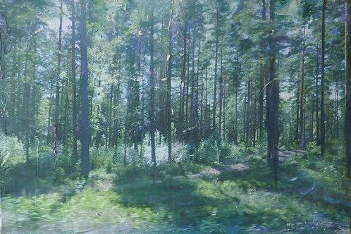 Finnland V