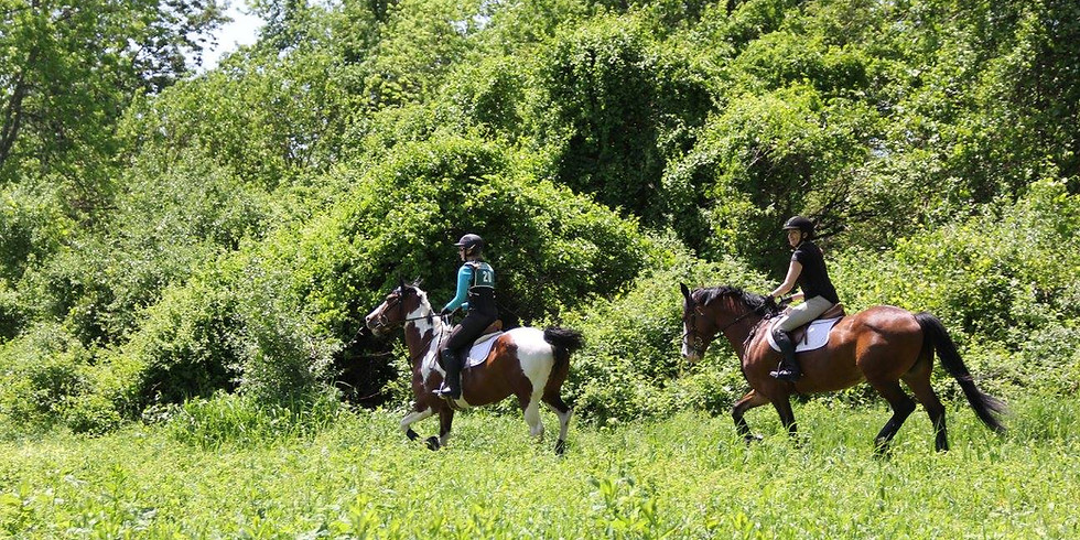 Private Horse Hunter Pace