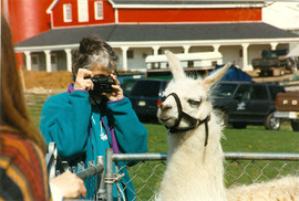 Polly photographing llama FFD 19970001.j