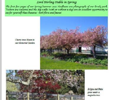 FLSS Spring/Summer 2021 Newsletter