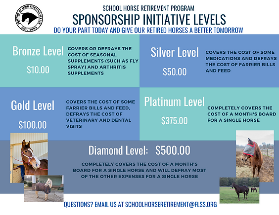 Sponsorship Initiative levels (6).png