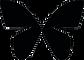 BBtraining Logo- Black.png