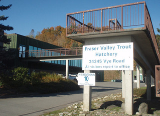 Fishing Forever event at Fraser Valley Trout Hatchery