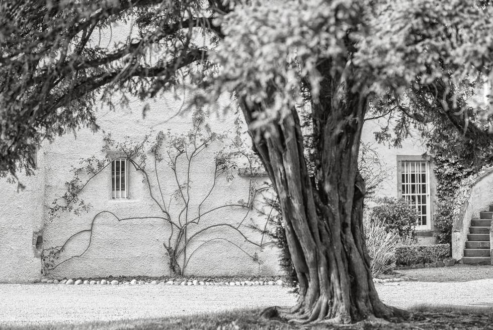 Myres Castle, wedding photos, wedding photographer, Auchtermuchty, Fife, Scotland, Karol Makula Photography-8.jpg
