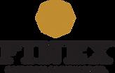 logo-finex-dark1.png