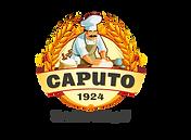 CaputoLogo_no_white_back.png