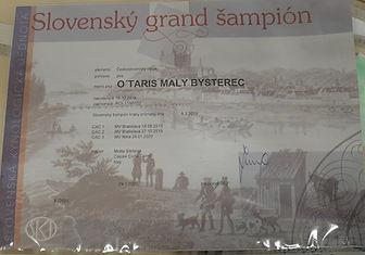 O'TARIS GRAN CH SLOVACCHIA.jpg