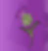 Screen Shot 2018-09-10 at 16.40.34.png