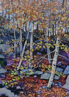 Autumn Beechwood