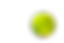 pickleball png.png