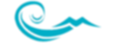 seagull_gallery_logo_wave blue.png