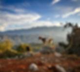 crete-2919290_1280.jpg