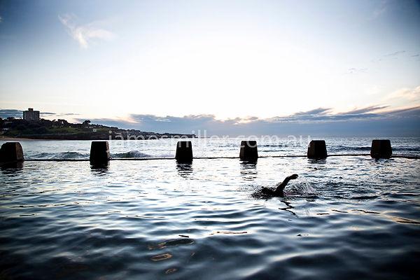 COOGEE-100 swimmer-3.jpg