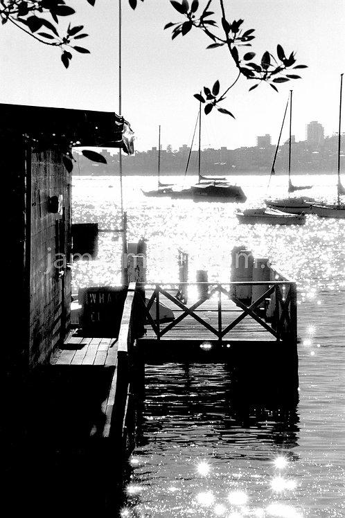 Balmoral old wharf sparkles
