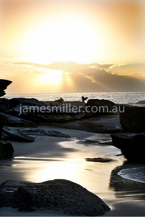 Tamarama sunrise