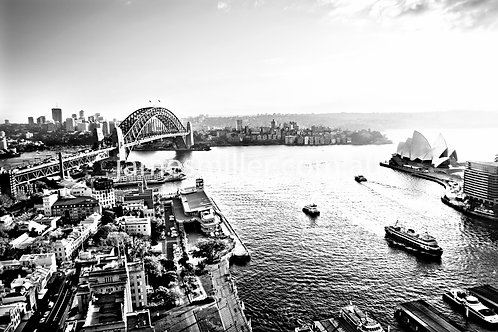 Goldfields black & white