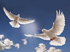 amour et paix.jpg