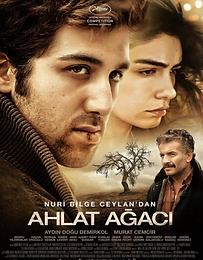 Ahlat Agaci