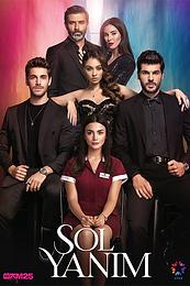 Sol Yanim