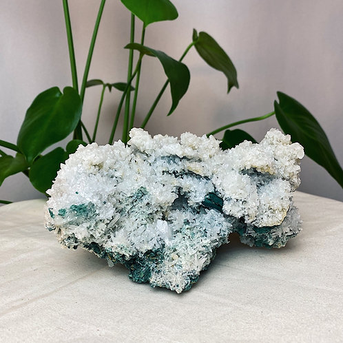Anhydrite Cluster | extra large