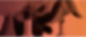 Screen Shot 2020-04-10 at 2.25.52 PM.png