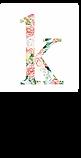 KNOX LOGO - original design file.webp