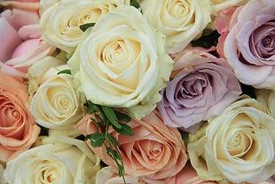 Najlepsze gatunki kwiatów