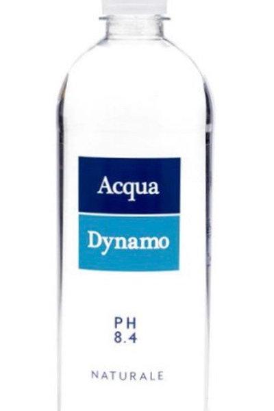 Acqua Dynamo 700ml cartone 8 pz naturale