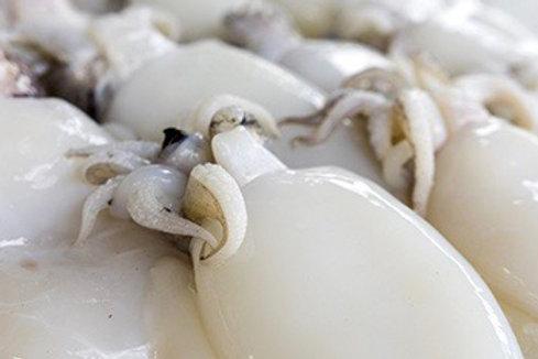 Seppia nera Italia pescato 1kg