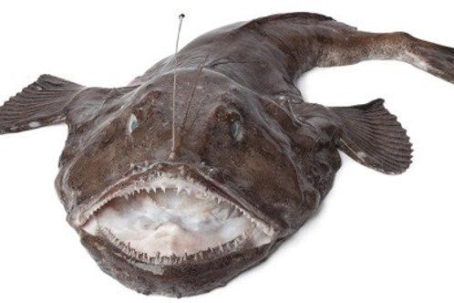 Coda di rospo pescato 1.2kg