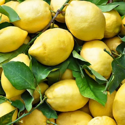 Limoni naturali costiera 1 scelta 1kg