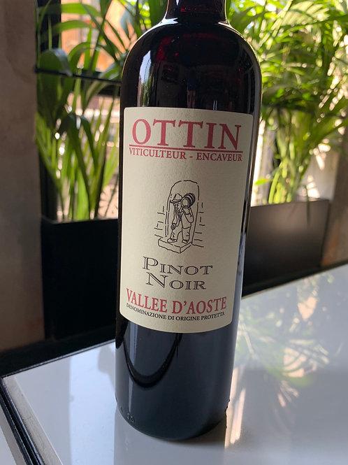 Pinot noir - Ottin