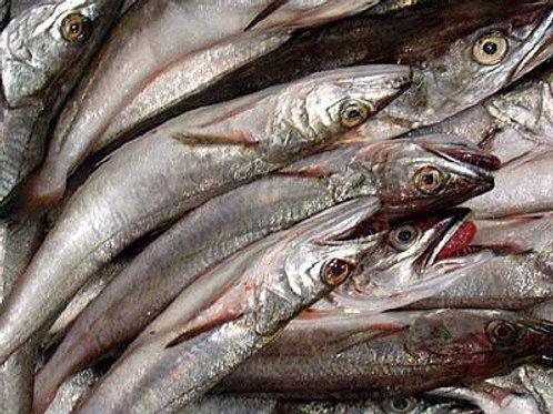 Nasello Italia pescato 1kg