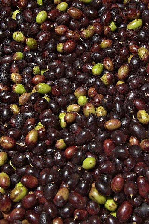 Olive taggiasche in salamoia 200g