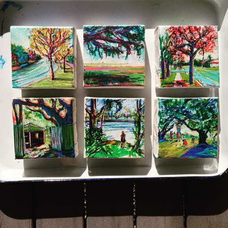 4x4 inch Landscapes: Morning light on a tray of freshly minted Mini's
