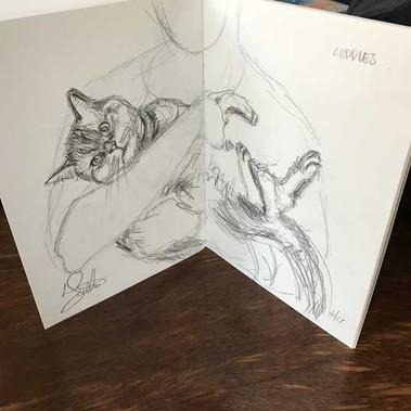 Cuddles in a sketch book