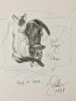 Di's kittens - Porgy & Bess