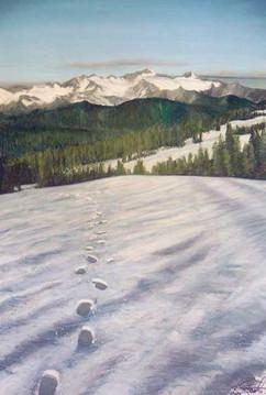 Mt Baker Morning Footprints USA