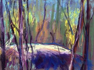 Girraween beyond Bald Rock Creek 2