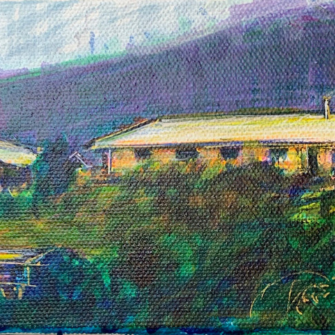 House Portrait: New Zealand
