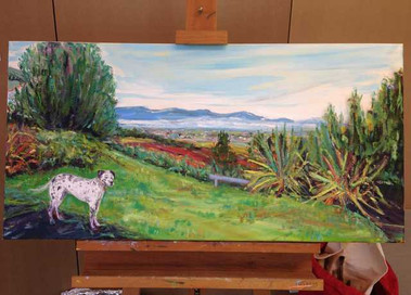 Hemi and the Hutt Valley