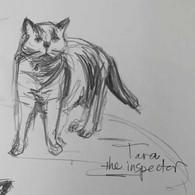 Tara the Inspector
