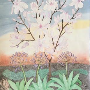 Magnolia and Mushrooms